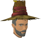 Modified farmer's hat chathead (male).png