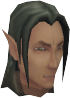Elf Tracker chathead.png
