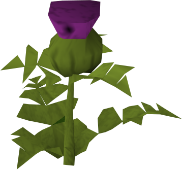 Thistle.png: RS3 Inventory image of Thistle