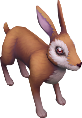 Common brown rabbit (unchecked) detail.png