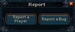 Report interface.png