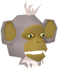 The monkeys's chathead when kidnapped by Amascut's sense demons.