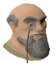 Captain Lawgof chathead old2.png