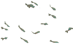 Neon Tetra.png