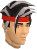 Linza's hair chathead (male).png