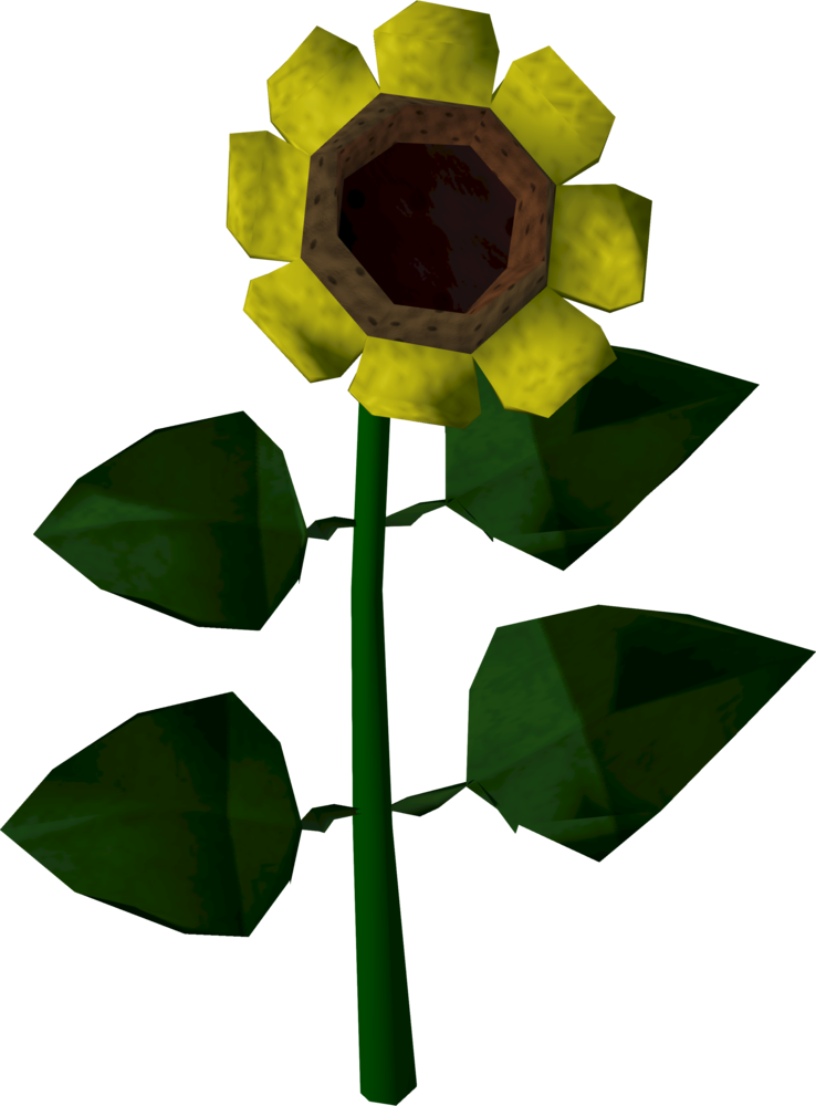 Sunflower.png: RS3 Inventory image of Sunflower
