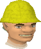 Gnormadium chathead old2.png