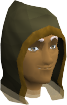 Necromancer hood chathead.png
