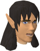 Elf Tracker chathead old.png