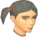 Female hair pigtails.png