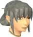 Female hair pinned up.png