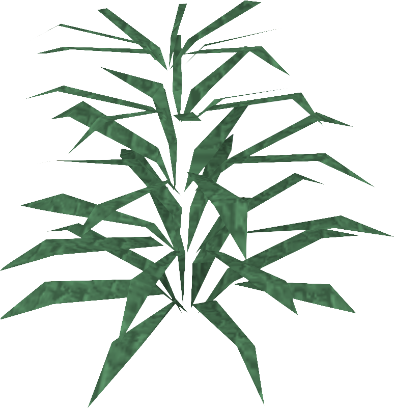 Rosemary detail.png