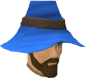 Zachory Bragg blue wizard hat chathead.png
