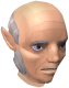 Gnome emissary chathead.png