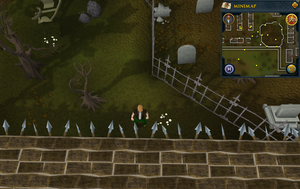 Scan clue West Ardougne southwest of graveyard.png