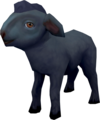 Black lamb.png