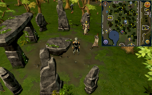 Emote clue Cheer Taverley Stone Circle.png