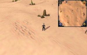 Scan clue Kharidian Desert south-east of fairy ring.png