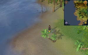 Scan clue Kharazi Jungle 5 steps from western coastline.png