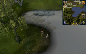 Compass clue Ardougne south-east of Ardougne Zoo.png