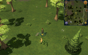 Scan clue Piscatoris Hunter area east of fairy ring.png