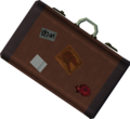 Suitcase detail.png