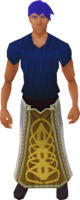 Ceremonial robe.png