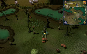 Scan clue Haunted Woods south of Alice's Farming Shop.png