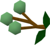 Grapes of Guthix detail.png