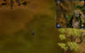 Tetracompass location Ardougne west of the Observatory.png