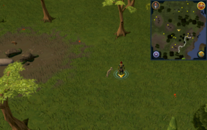 Scan clue Piscatoris Hunter area north of southeastern fencing.png