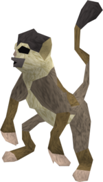 Baby monkey (brown and beige) pet.png