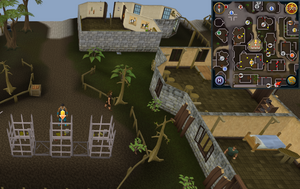 Scan clue Varrock south-east of Varrock square.png