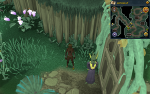 Scan clue Zanaris west of gates to market area.png