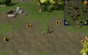 Compass clue Piscatoris south-east of fairy ring.png