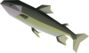 Leaping trout detail.png