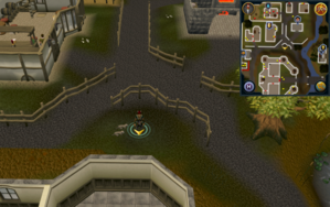 Scan clue East Ardougne north of Ardougne Castle.png