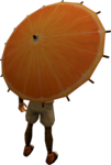 Orange parasol equipped.png
