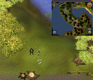 Map clue location Seers' to Rellekka road.png