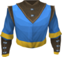 Wizard robe top (g) detail.png