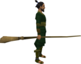 Broomstick equipped.png