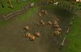 Varrock south-east mine.png