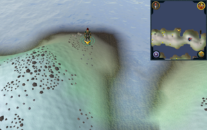 Scan clue Fremennik Isles just north-west of eastern cave on northern snowy island.png