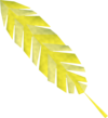 Golden feather (Eagles' Peak) detail.png