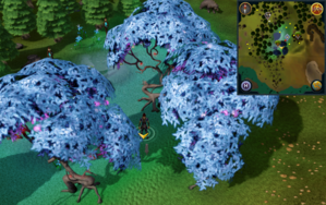 Scan clue Tirannwn between magic trees west of Lletya.png