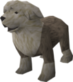 Sheepdog (grey) pet.png