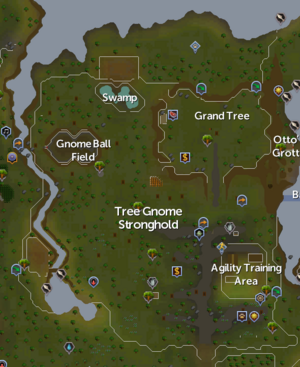 Tree Gnome Stronghold map.png