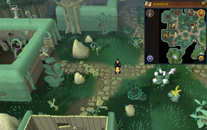 Scan clue Zanaris east of general store.png