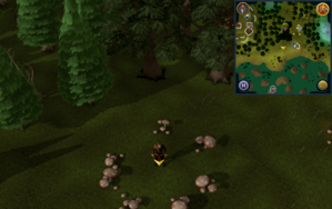 Scan clue Tirannwn south-west of Hunter training icon east of Tyras Camp.png
