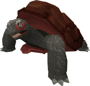 War Tortoise The Runescape Wiki